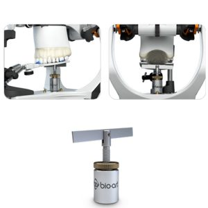 Bioart Fork Support-0